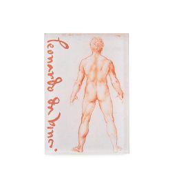 Leonardo Da Vinci A Standing Male Nude Magnet