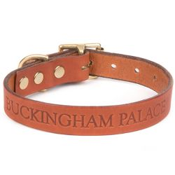 Buckingham Palace Dog Collar Small