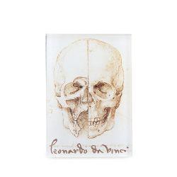 Leonardo Da Vinci The Skull Magnet