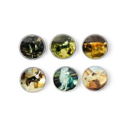 six glass circular magnets depicting different paintings of dogs