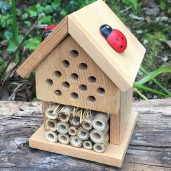 Rectangular tin displaying the kit to make your own insect house