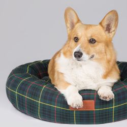 green tartan dog bed with leather tag reading 'Buckingham Palace'