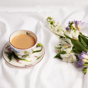 Chelsea porcelain botanical range teacup and saucer